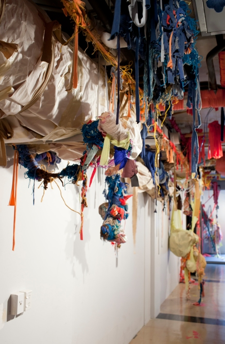 Sian Obstinate Object_2012 (2)